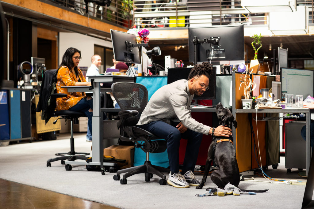 Office community with people and a dog